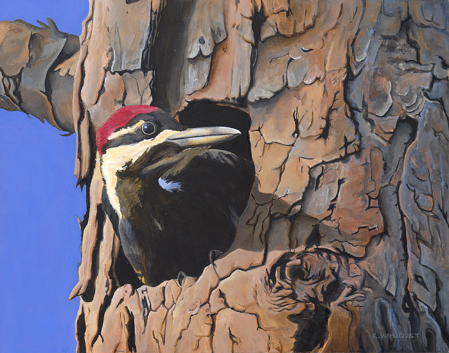 Bird Painting - Watchful Woodpecker by Kirsten Wahlquist