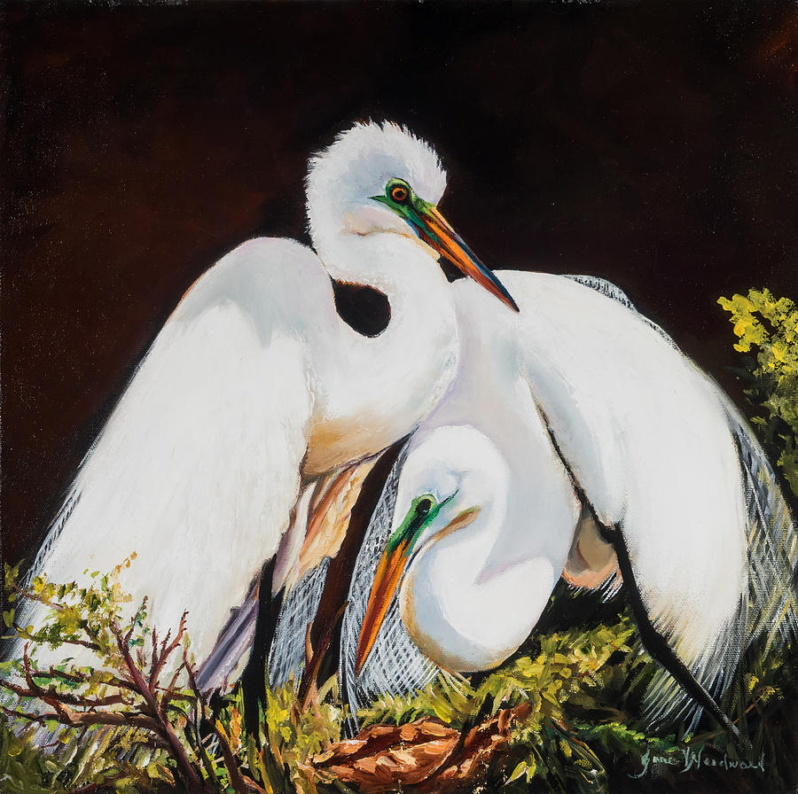 Egret Painting - Watching Over Her by Jane Woodward