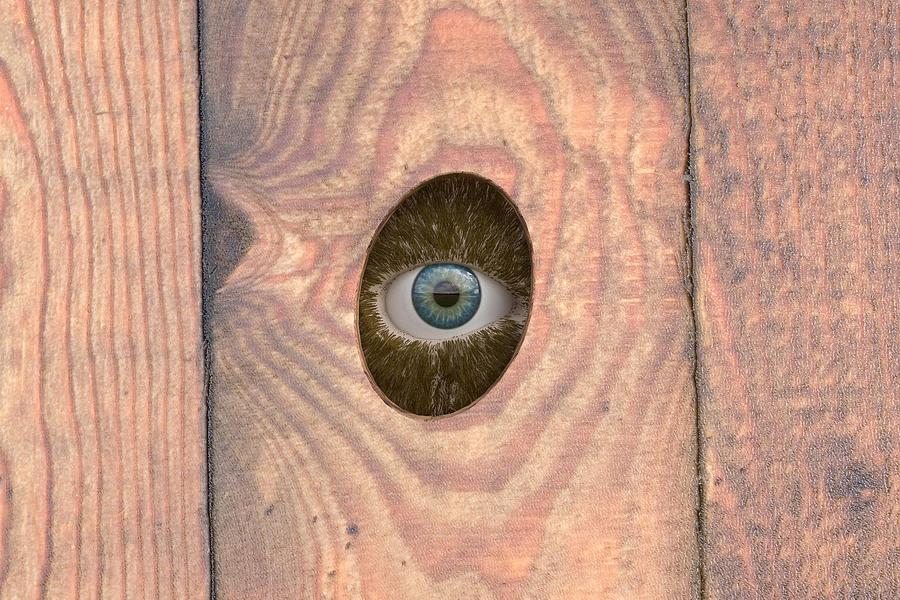 Eye Digital Art - Watching by Paul McManus