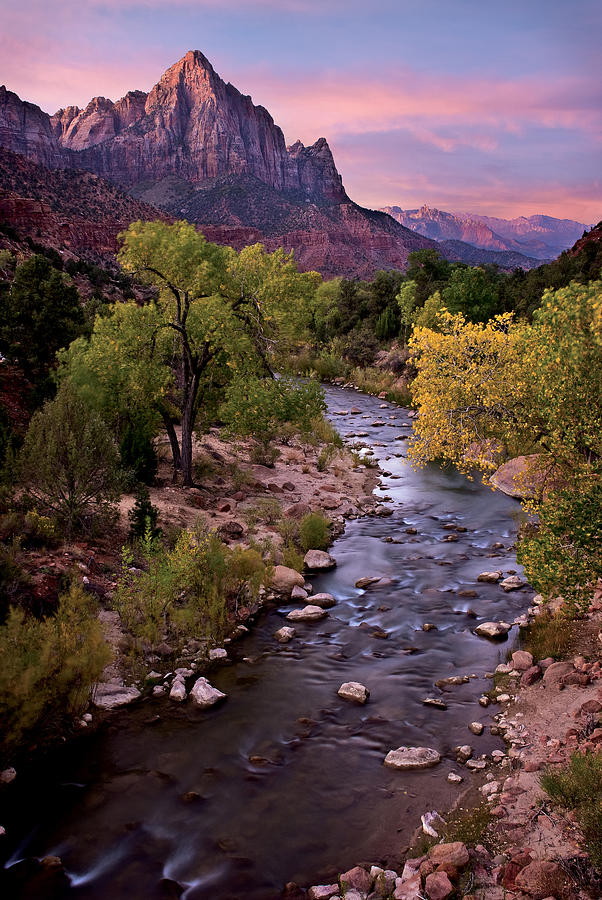Zion Photograph - Watchman  Tower Zion Sunrise by Dave Dilli