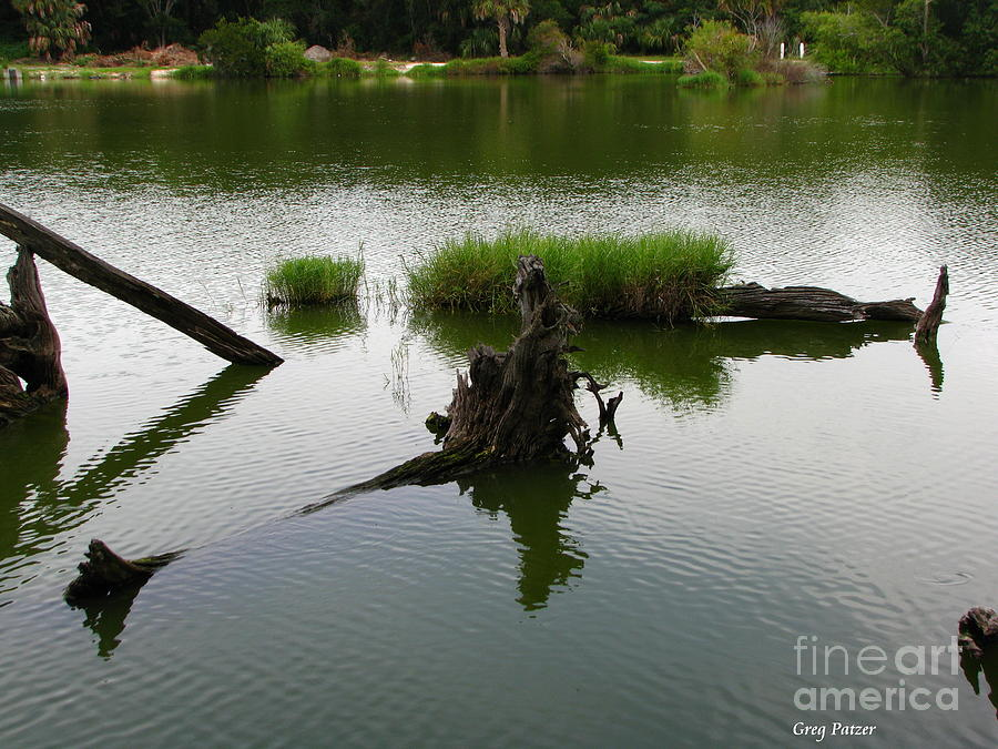 Water Photograph - Water Art by Greg Patzer