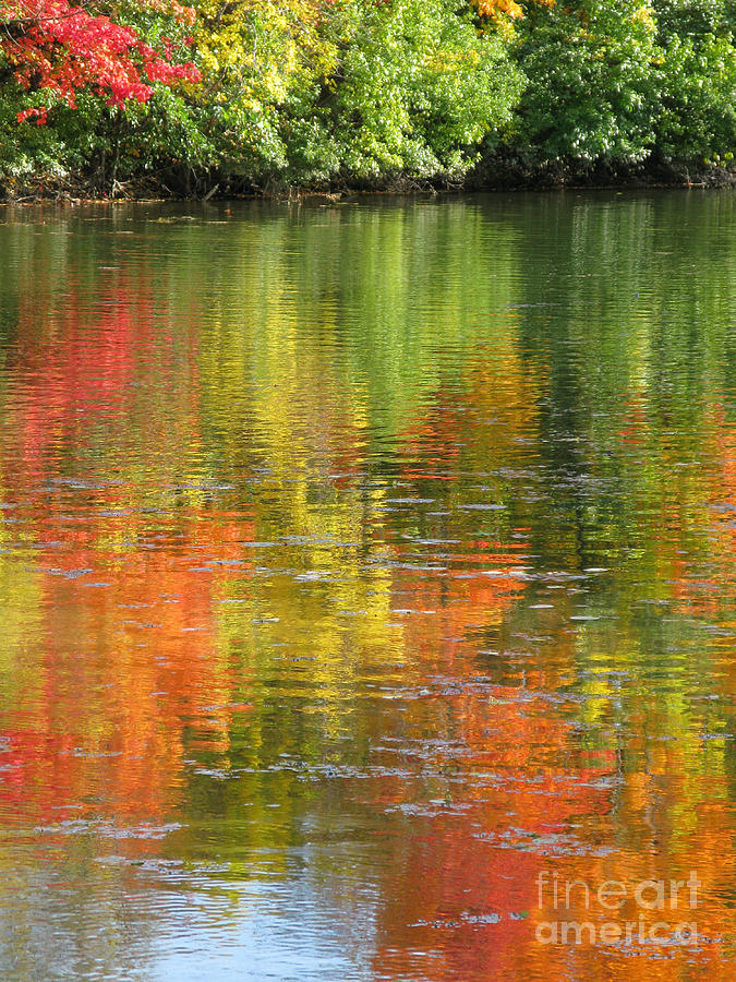 Autumn Photograph - Water Colors by Ann Horn