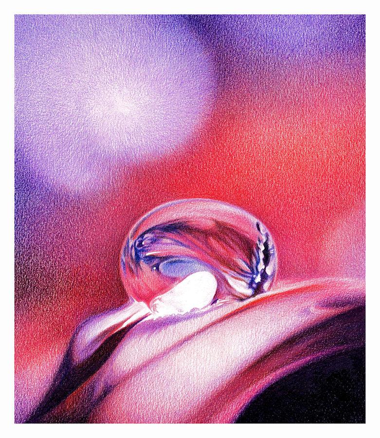 Water Drop Drawing - Water Drop by Natasha Denger