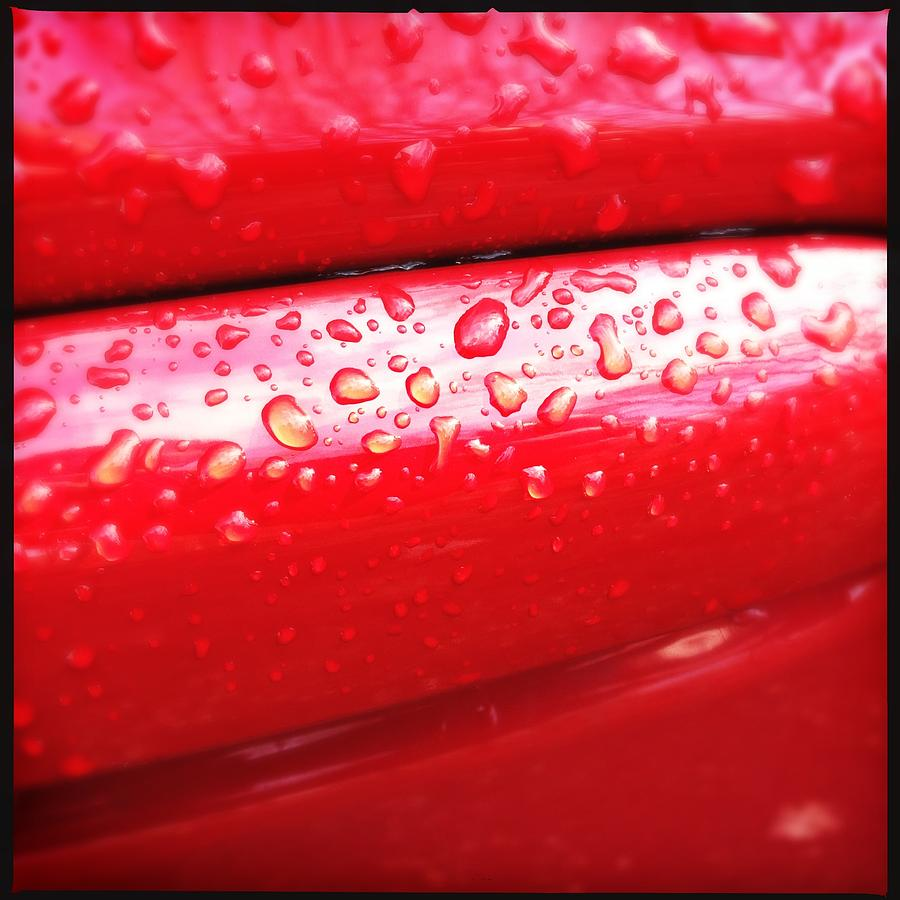 Drops Photograph - Water drops on red car paint by Matthias Hauser