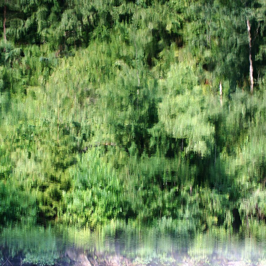 Shore Photograph - Water Forest by Stanislav Killer