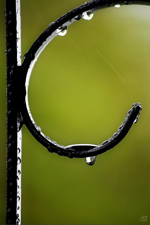 Interior Design Photograph - Water Ice Iron by Lisa Knechtel