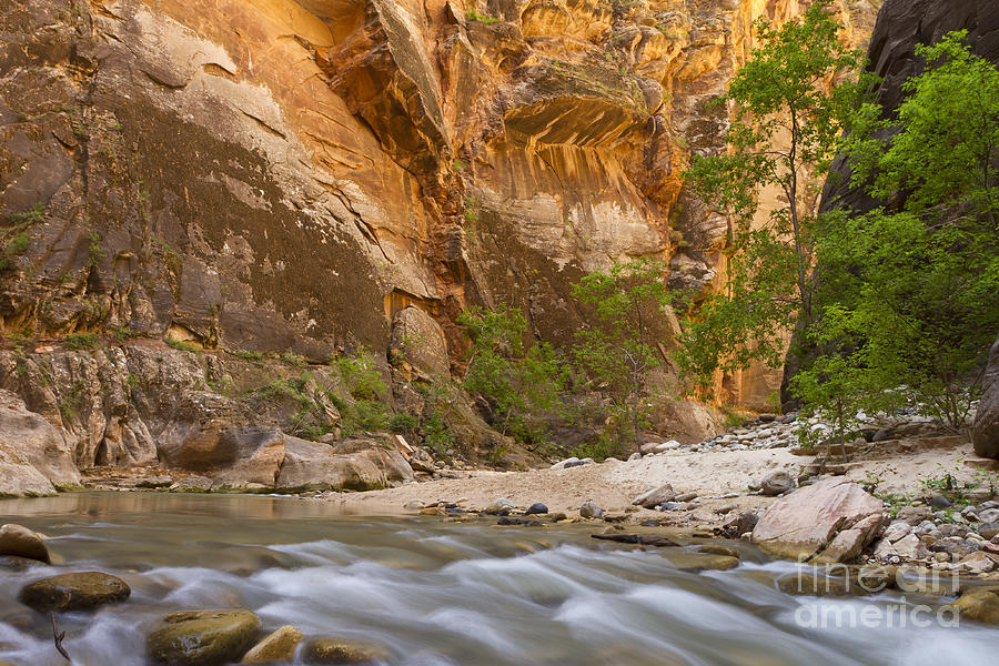 Zion Photograph - Water In The Narrows by Bryan Keil