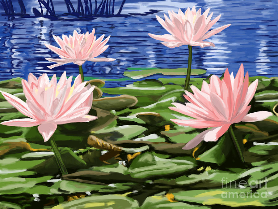 Water Lily Painting - Water Lilies by Tim Gilliland