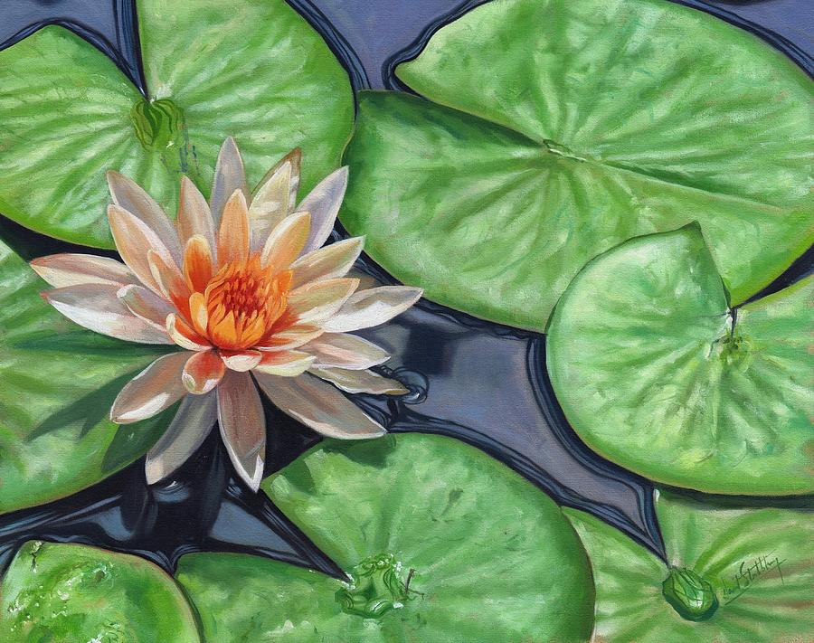 Lily Painting - Water Lily by David Stribbling