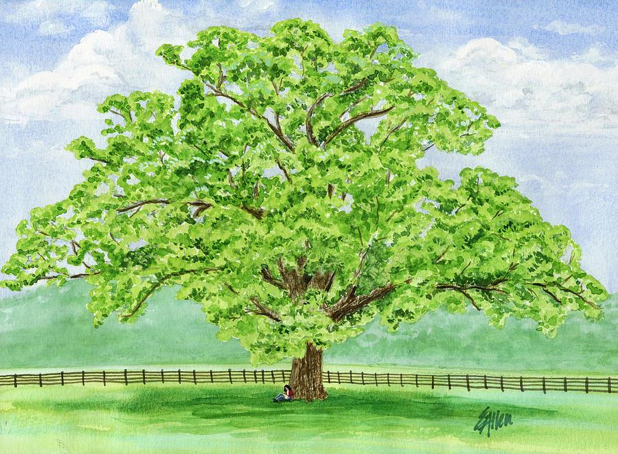 Landscape Painting - Watercolor -  Brentwood Bur Oak by Elaine Allen