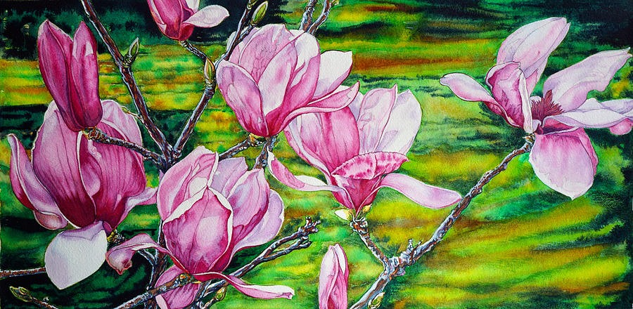 Watercolor Exercise Magnolias by Xavier Francois