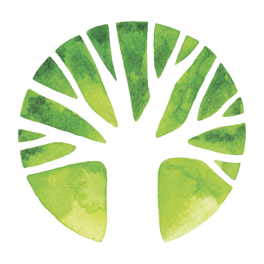 Watercolor Tree Logo Drawing by Saemilee