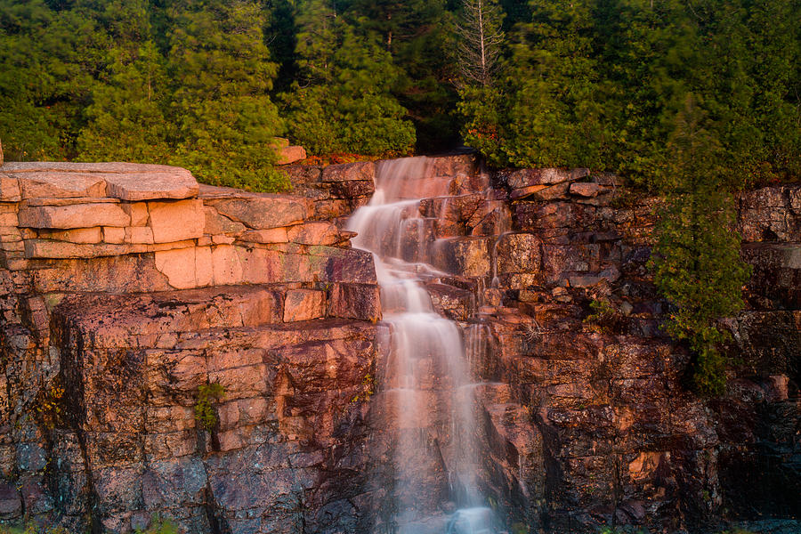 Tree Photograph - Waterfall by Allan Johnson