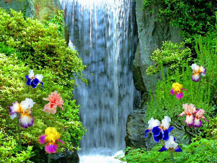 вячеславович, то, букет водопад из цветов фото высокое разрешение меня