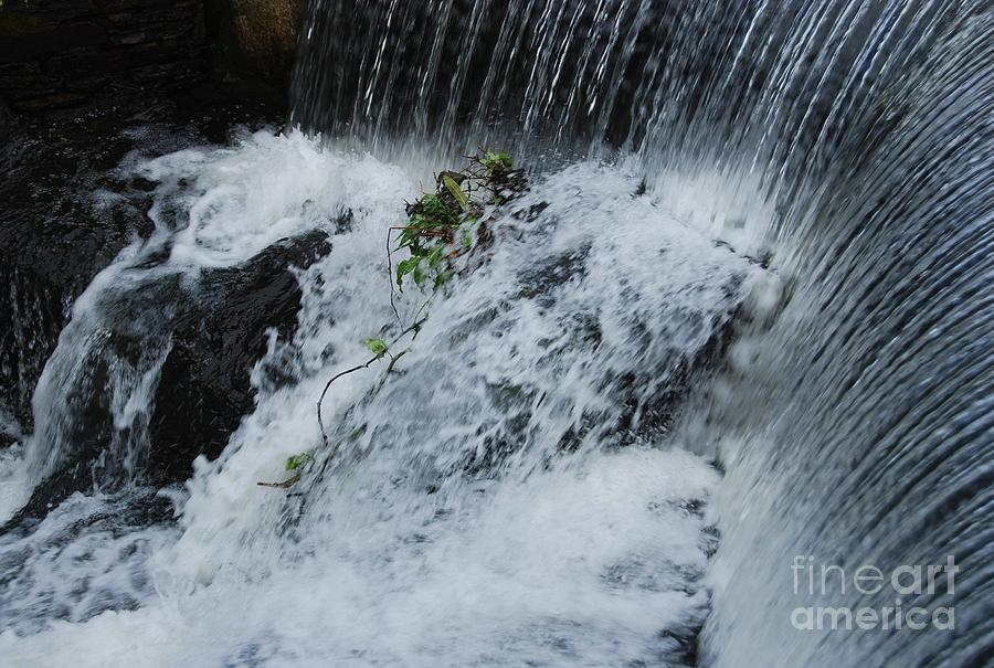 A Waterfall In Bantry, Ireland Photograph by Marcus Dagan