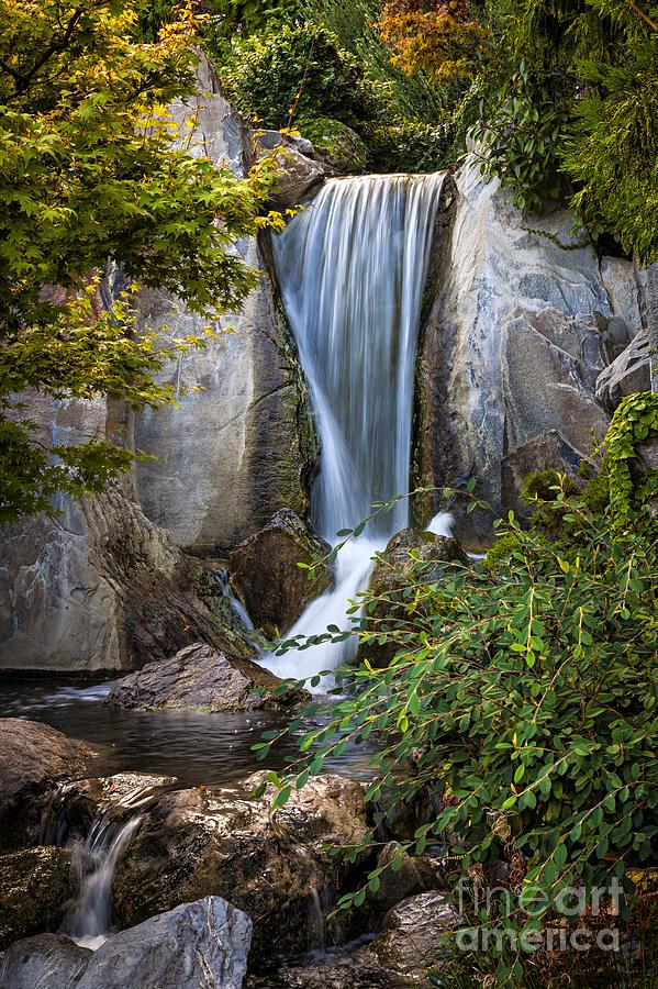 Waterfall Photograph - Waterfall In Japanese Garden by Elena Elisseeva