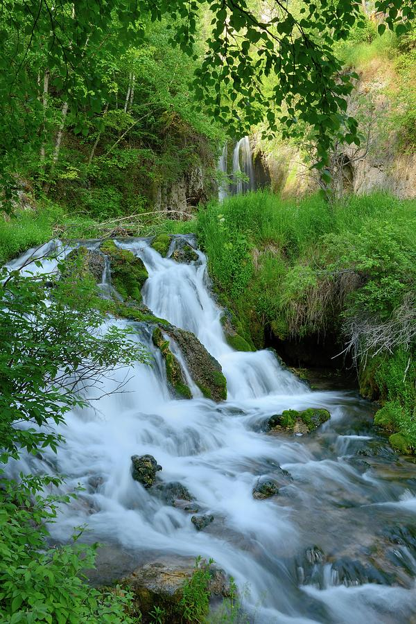 Waterfall In Spearfish Cayon South Photograph by Groveb