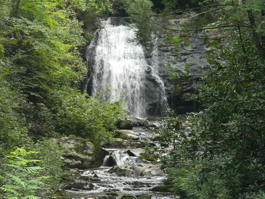 Waterfall Photograph - Waterfall by Linda Brown