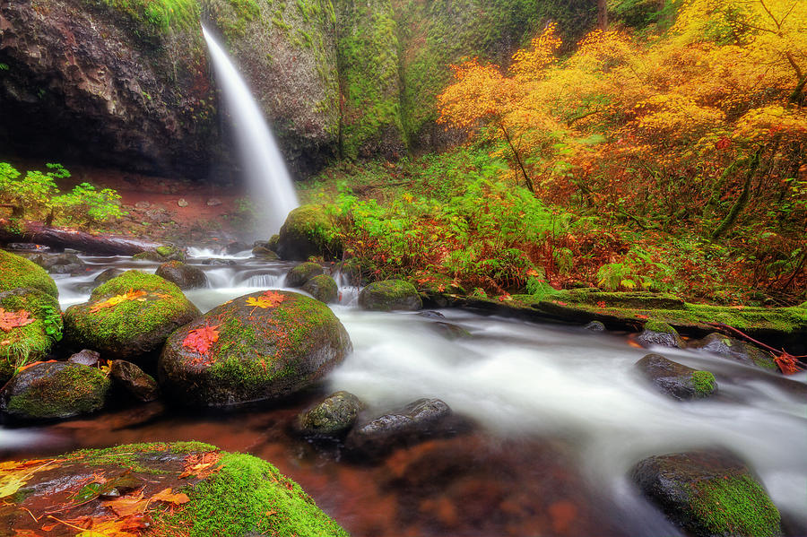 Waterfall With Autumn Colors Photograph