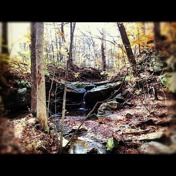 Creek Photograph - Waterfalling by J Telischak