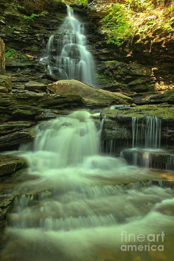 Ricketts Glen Photograph - Waterfalling Through Ricketts Glen by Adam Jewell