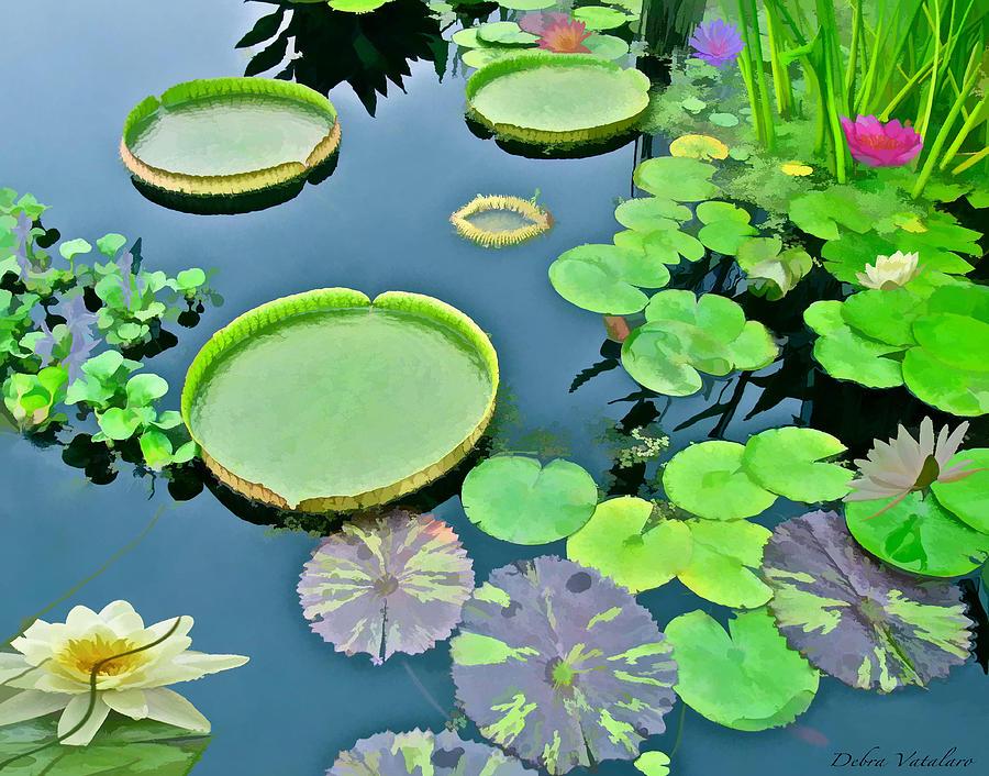 Watergarden Painting - Watergarden  by Debra     Vatalaro