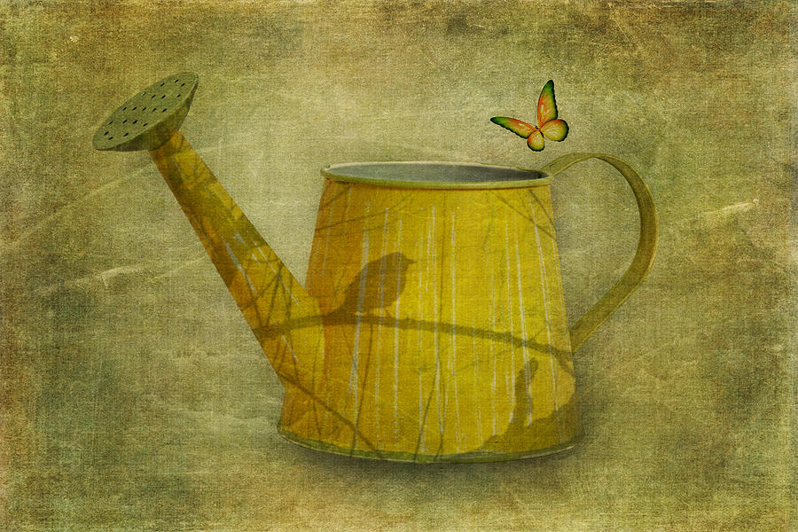 Bird Photograph - Watering Can With Texture by Tom Mc Nemar
