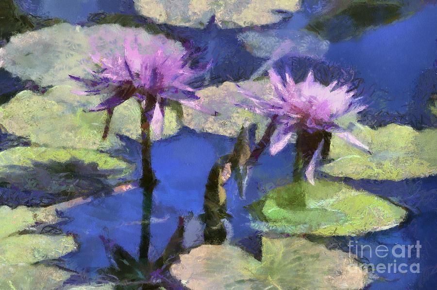 Plants Digital Art - Waterlilies by Teresa Zieba