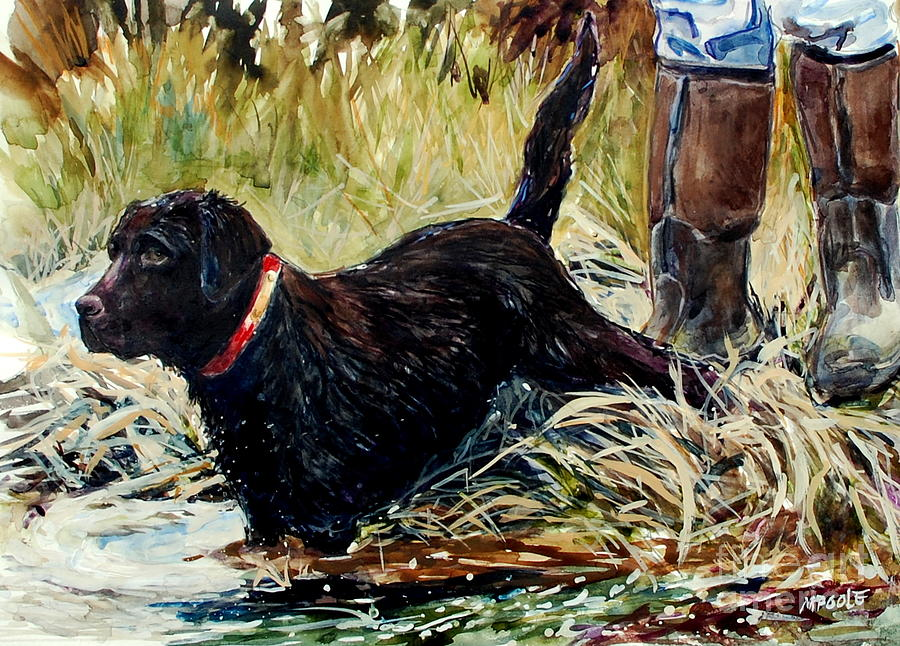 Chocolate Lab Painting - Waters Edge by Molly Poole