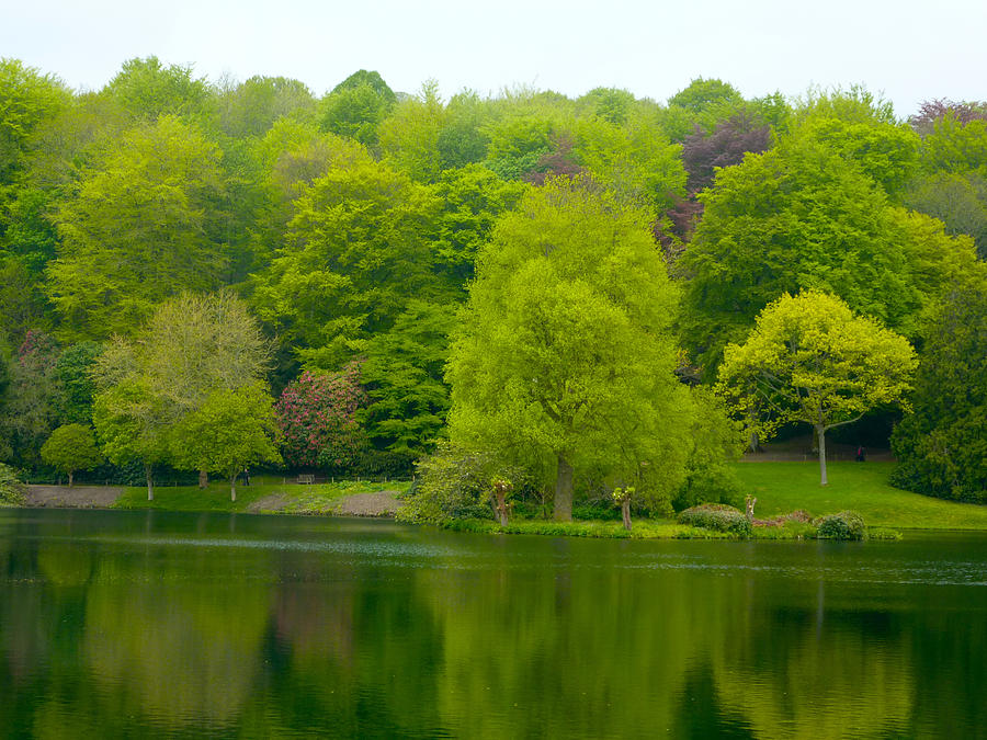 Green Photograph - Waters Edge by Rob Sherwood