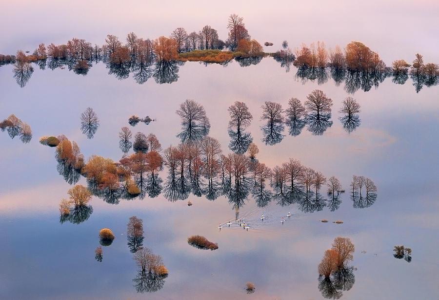Flood Photograph - Waterworld by Ales Komovec