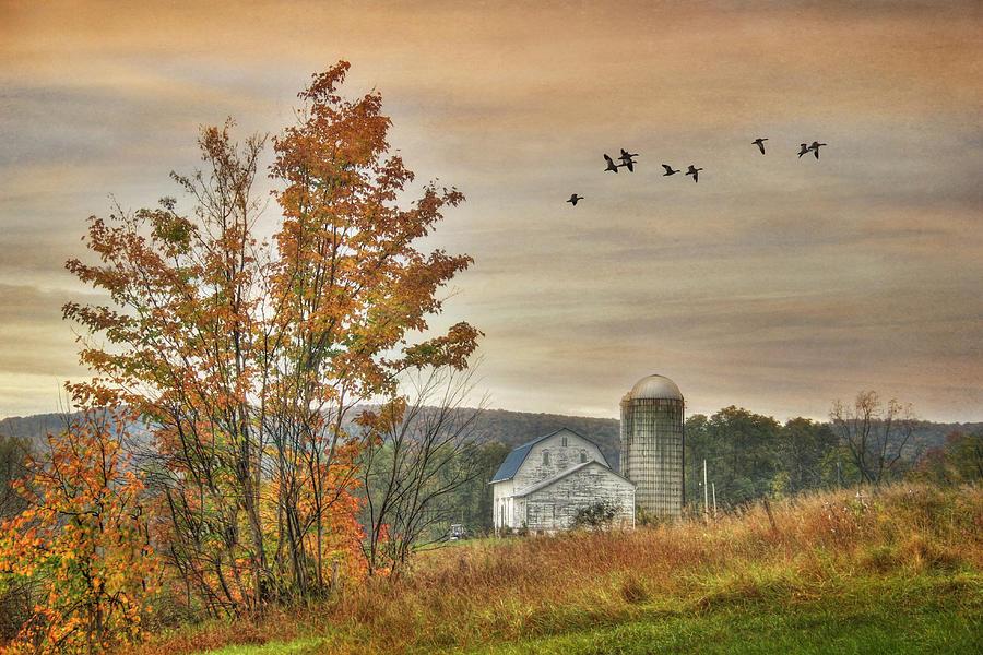 Farm Photograph - Watkins Glen Farm by Lori Deiter