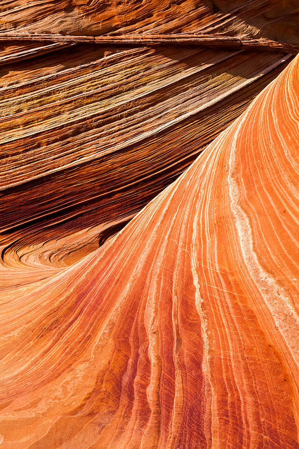 Nature Photograph - Wave Lines by Chad Dutson
