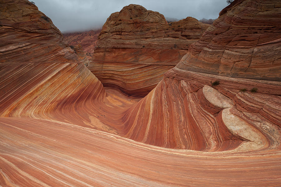 Coyote Buttes Photograph - Wave Three by Darryl Wilkinson