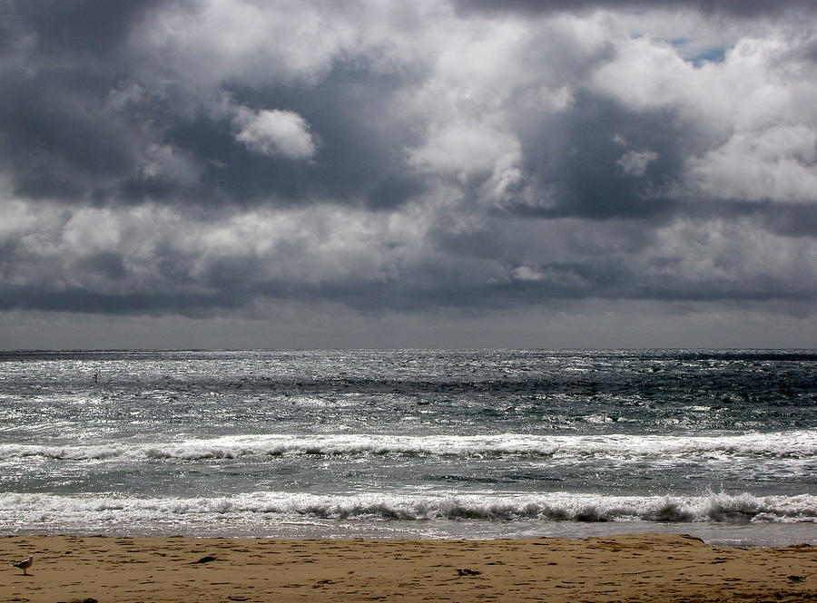 Seascape Photograph - Waves And Beach by Karen E Phillips