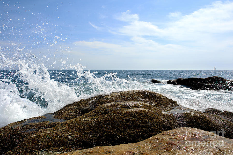 Maine Photograph - Waves Crashing by Olivier Le Queinec