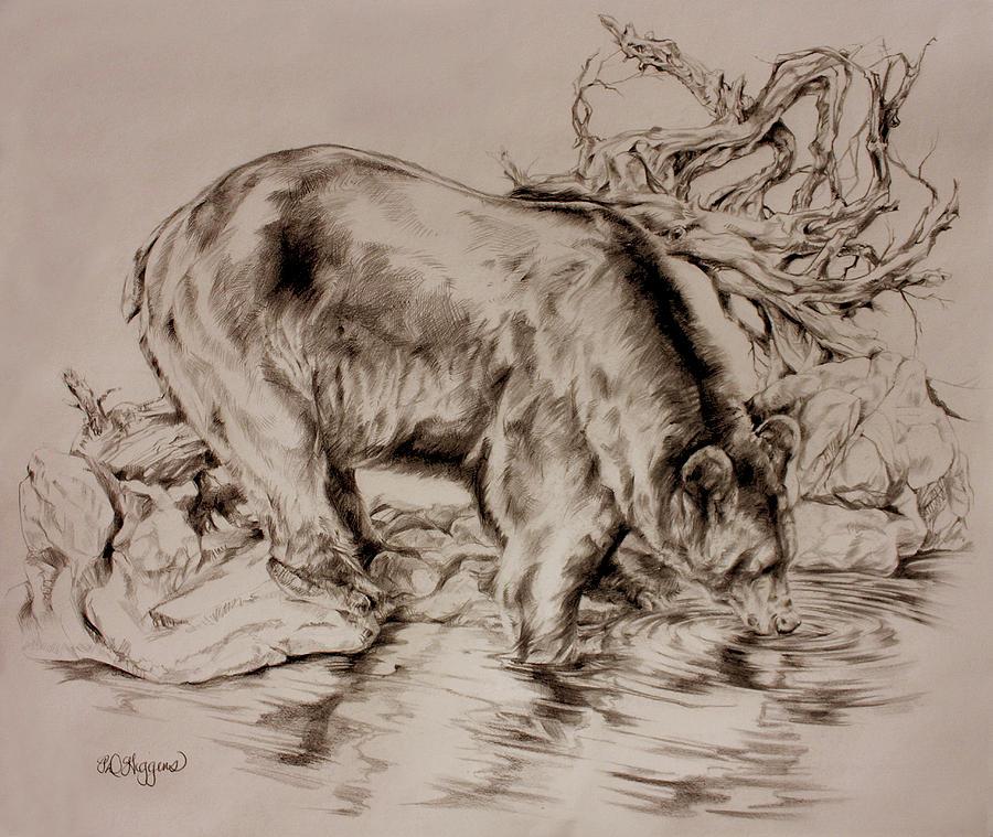 Bear Drawing - Waves Of Joy by Derrick Higgins