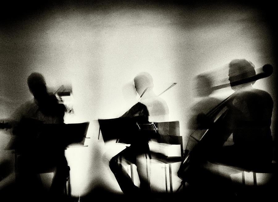 Grain Photograph - Waves Of Music by Mirela Momanu
