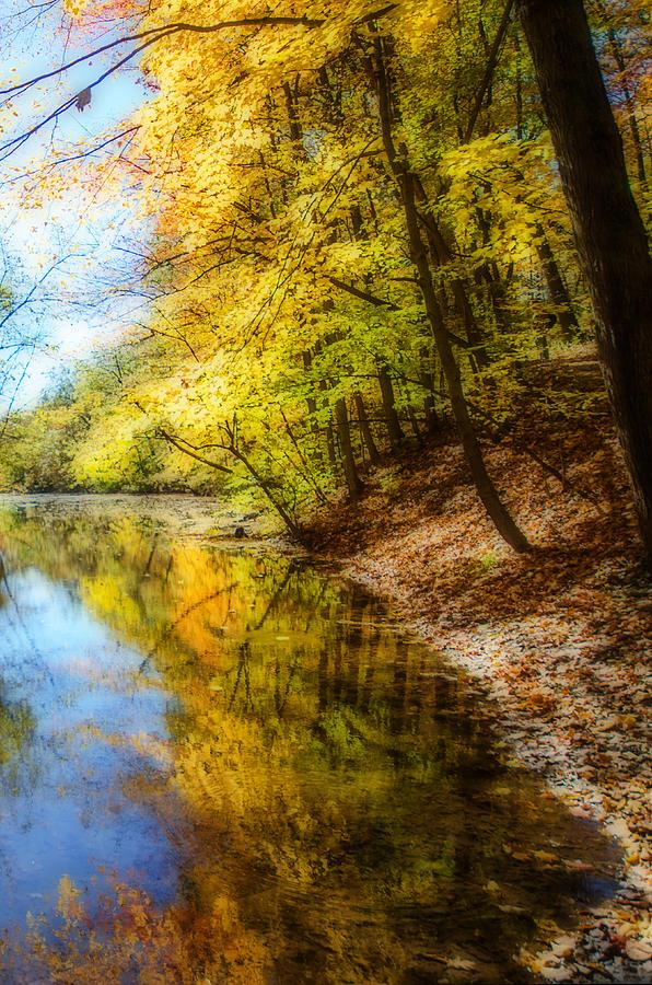 Fall Photograph - Waxen Autumn 3  by Susan McMenamin