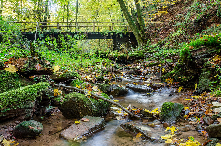 Stream Photograph - Way Of St. James Bridge by Jeffrey Teeselink