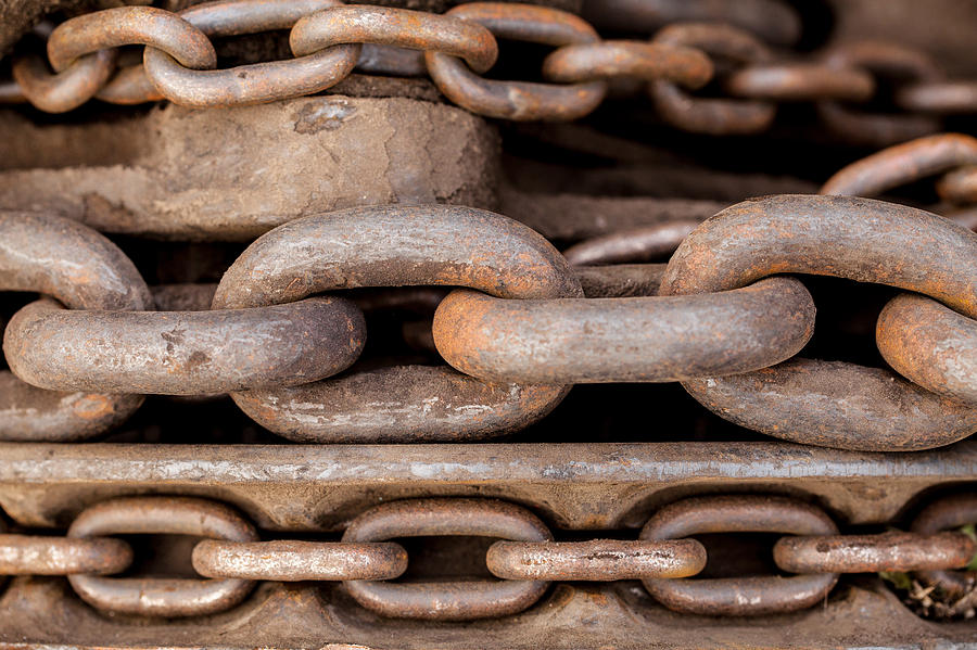 Chain Photograph - We Are All Linked by Fran Riley