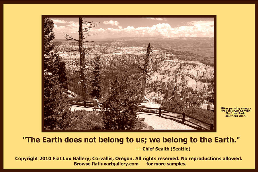 Bryce Canyon National Park Photograph - We Belong To Theearth by Michael Moore