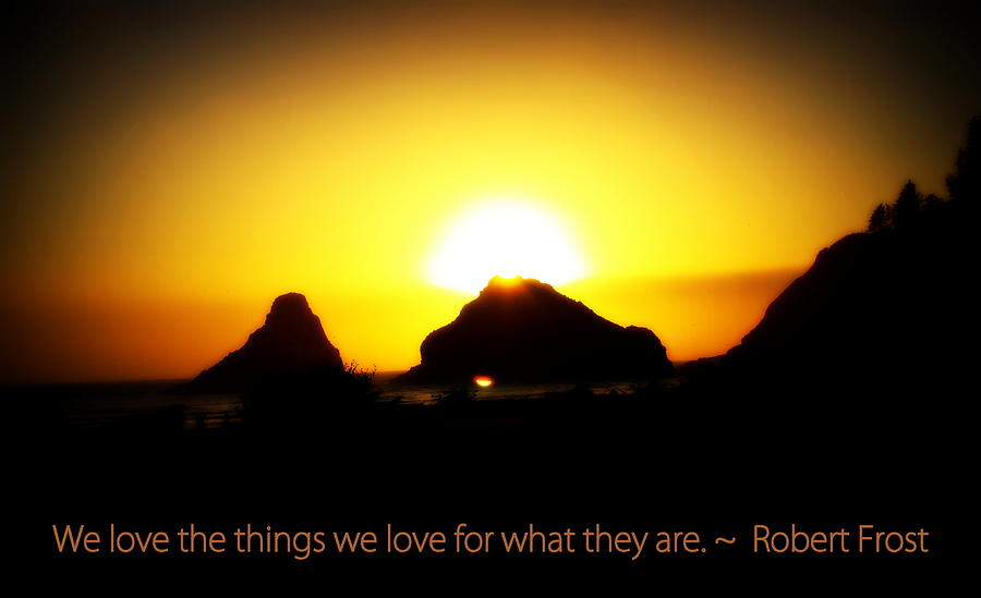 Sunset Photograph - We Love The Things We Love by Kathy Sampson