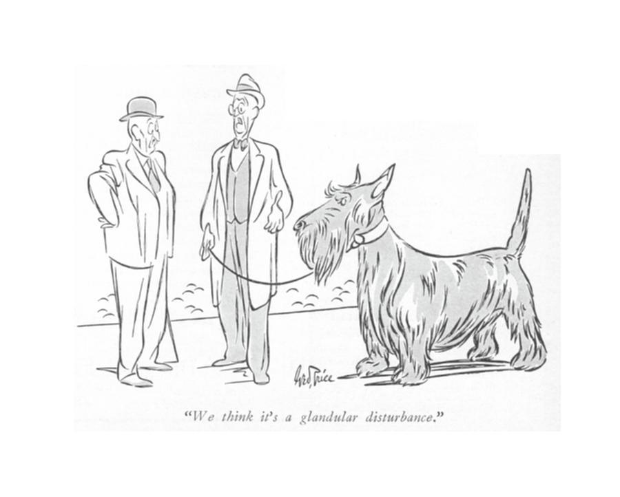 A Glandular Disturbance Drawing by George Price