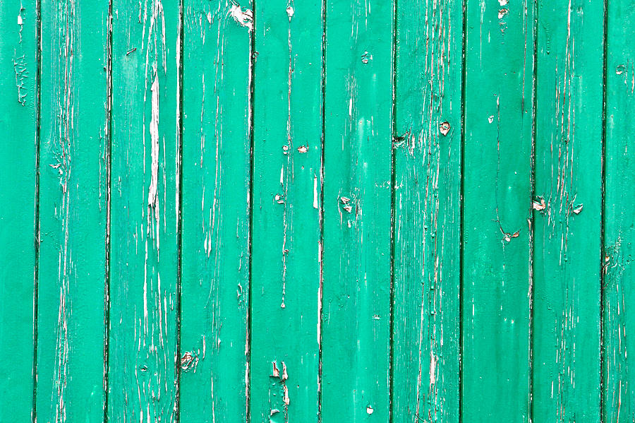 Backdrop Photograph - Weathered Green Wood by Tom Gowanlock