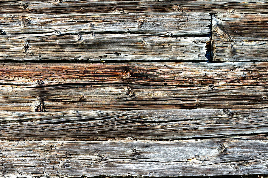 Weathered wood 1 by Charles Lupica