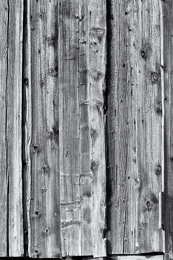 Weathered wood 4 by Charles Lupica