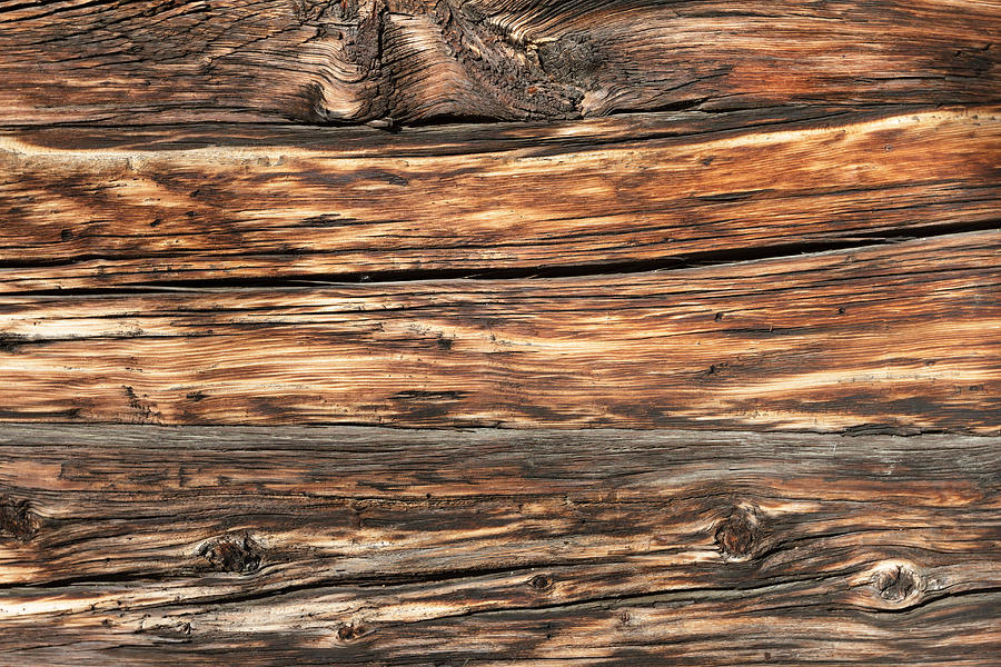 Weathered wood 6 by Charles Lupica