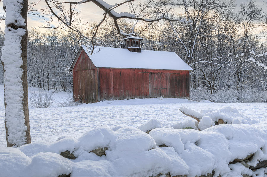 Old Red Barn Photograph - Weathering Winter by Bill Wakeley