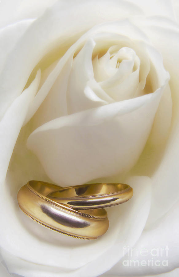 Открытки с бракосочетанием сына родителям, картинки для айфона